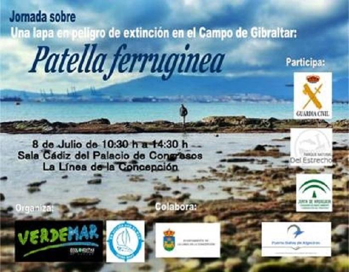 Jornada 8 de Julio sobre Patella ferruginea, una lapa en peligro de extincion