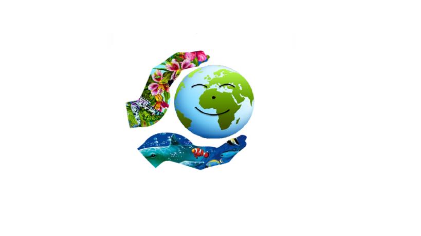 Acercando el Mar y el Medioambiente